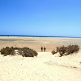 Sotavento Beach, Playa Jandia, Fuerteventura. Endless golden sands