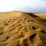 Maspalomas Sand Dunes. The Most Stunning Cruise Territory on the Planet